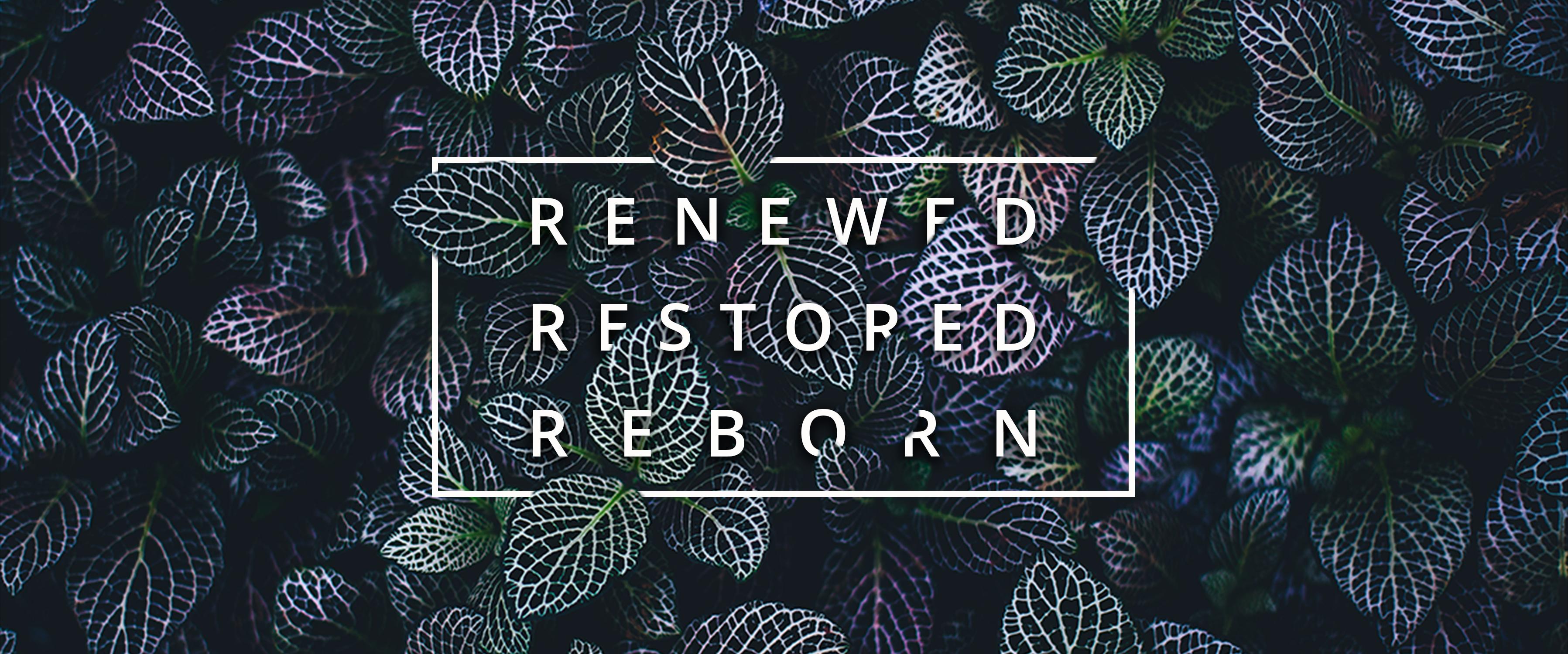 Renewed, Restored, Reborn
